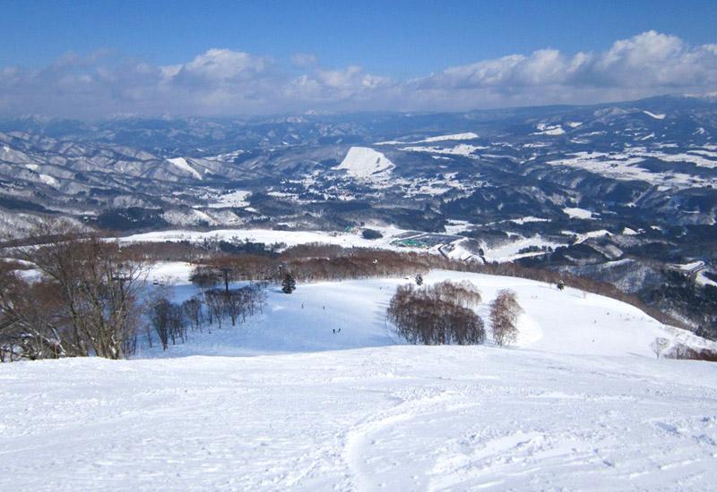 北側斜面なので積雪豊富で雪質も良い「ダイナランド」