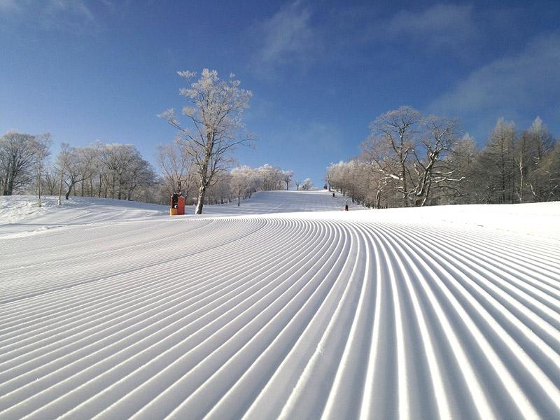 誰と行っても皆が楽しめるめいほうスキー場