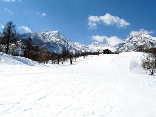 関西発 赤倉温泉スキー場 赤倉全山共通リフト券付 スキー