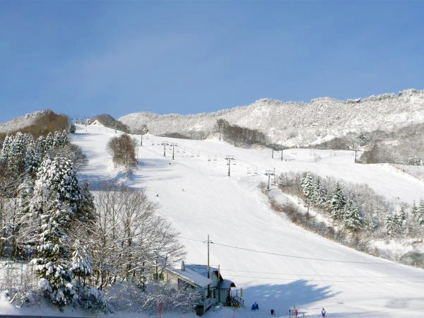 ハチ 高原 スキー