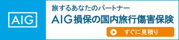 AIG保険会社のWebページ